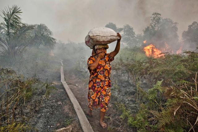 """""""il est encore temps"""" pour le climat et la biodiversité Huile10"""