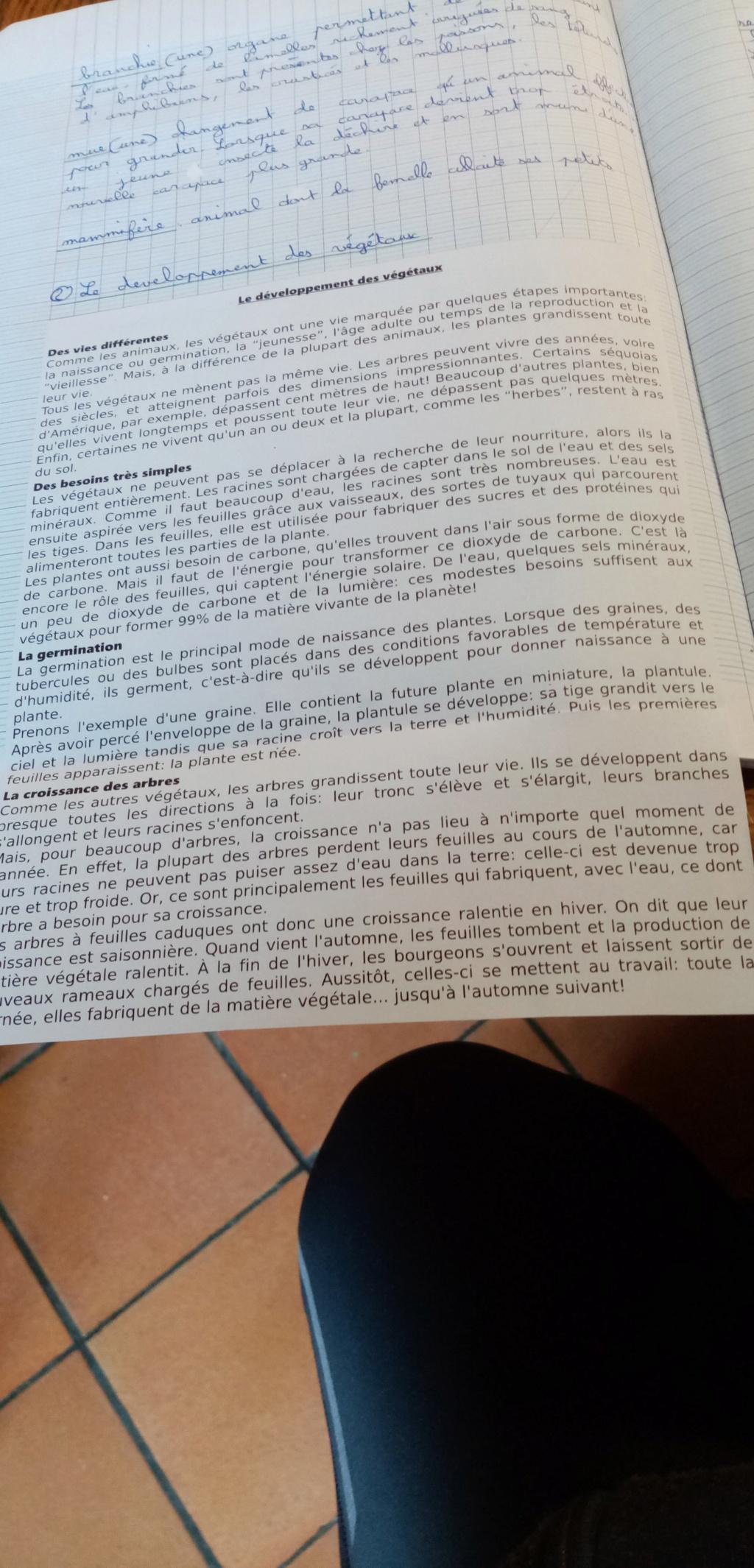 Votre organisation pour la quarantaine - Page 6 Img-2011