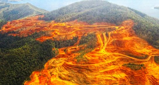 """""""il est encore temps"""" pour le climat et la biodiversité Mine-d10"""