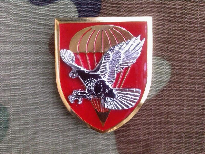 Vojska Srbije patches 72sf_b10
