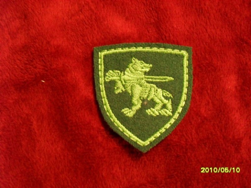 Lithuania military( Lietuvos kariuomene) badges,insignias,beret/hat badges,patches Gv_kok11