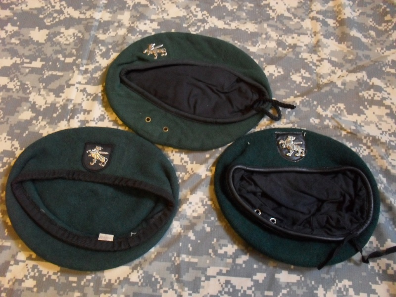 Lithuania military( Lietuvos kariuomene) badges,insignias,beret/hat badges,patches Lk_gv_10
