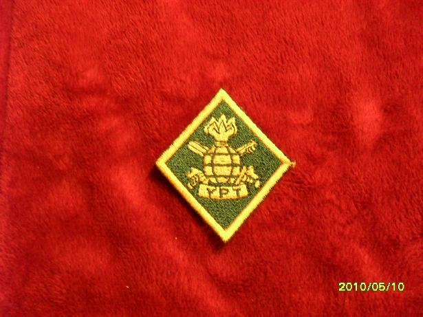 Lithuania military( Lietuvos kariuomene) badges,insignias,beret/hat badges,patches Lk_ypt10