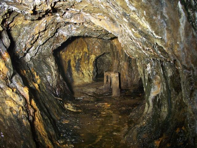 Llanelltyd / Foel Ispri Gold Mine 100_2018