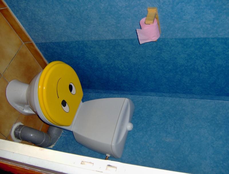 besoin d'idée pour un relooking...de WC! Hpim1712