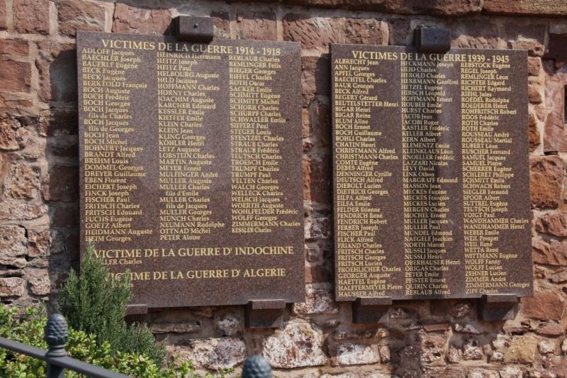 Cérémonie commémorative du 65e anniversaire de la victoire du 8 mai 1945 Img_8548