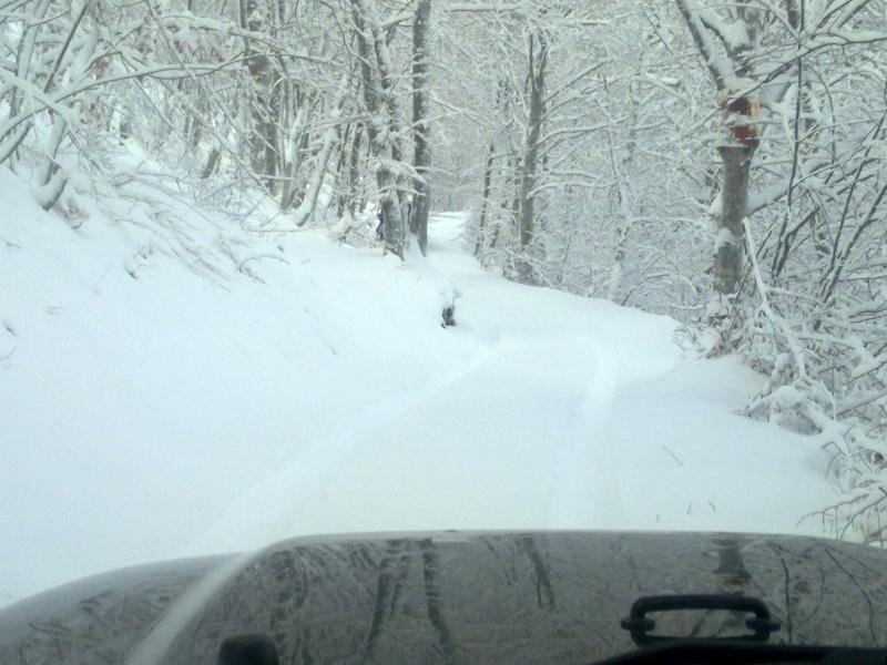 .....giretto sulla neve Immagi26