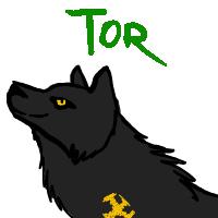 Yagami's Art Tor10
