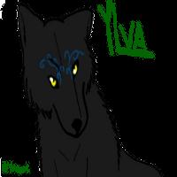Yagami's Art Ylva10