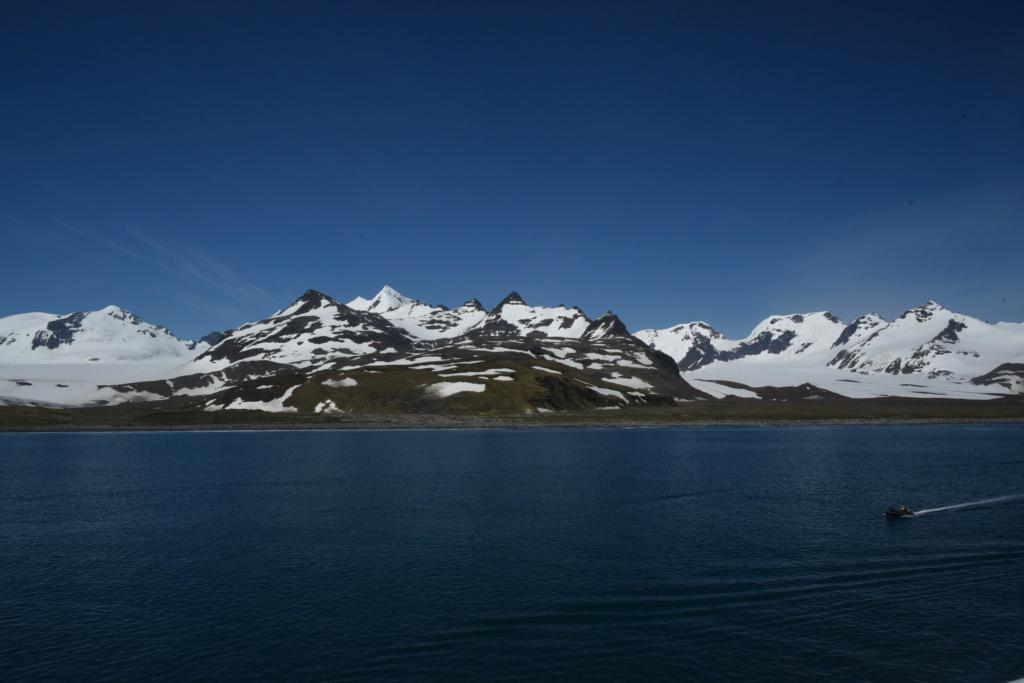 Antarctique - Page 2 Dsc_7112