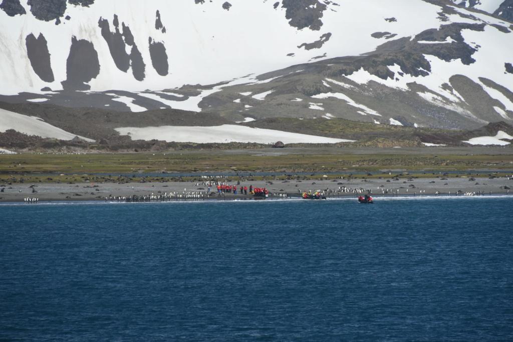 Antarctique - Page 2 Dsc_7113