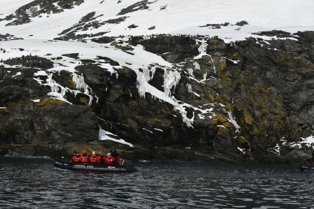 Antarctique - Page 3 Dsc_7311
