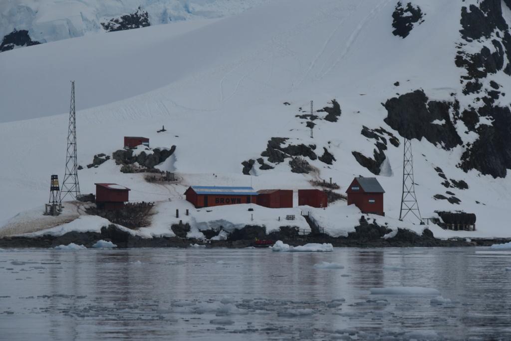 Antarctique - Page 4 Dsc_7612
