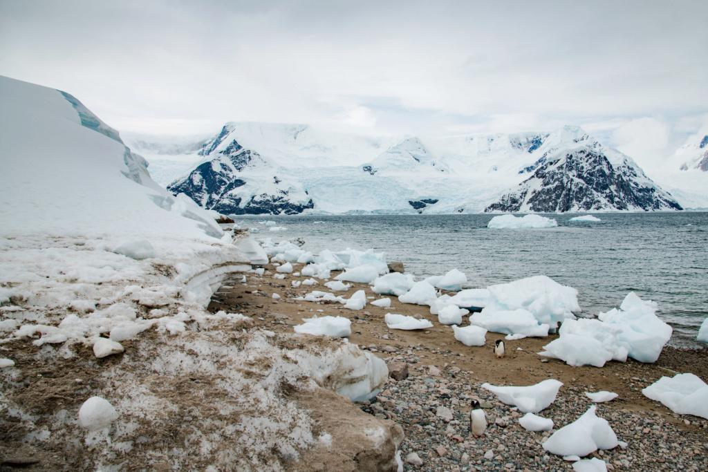 Antarctique - Page 4 N-200122