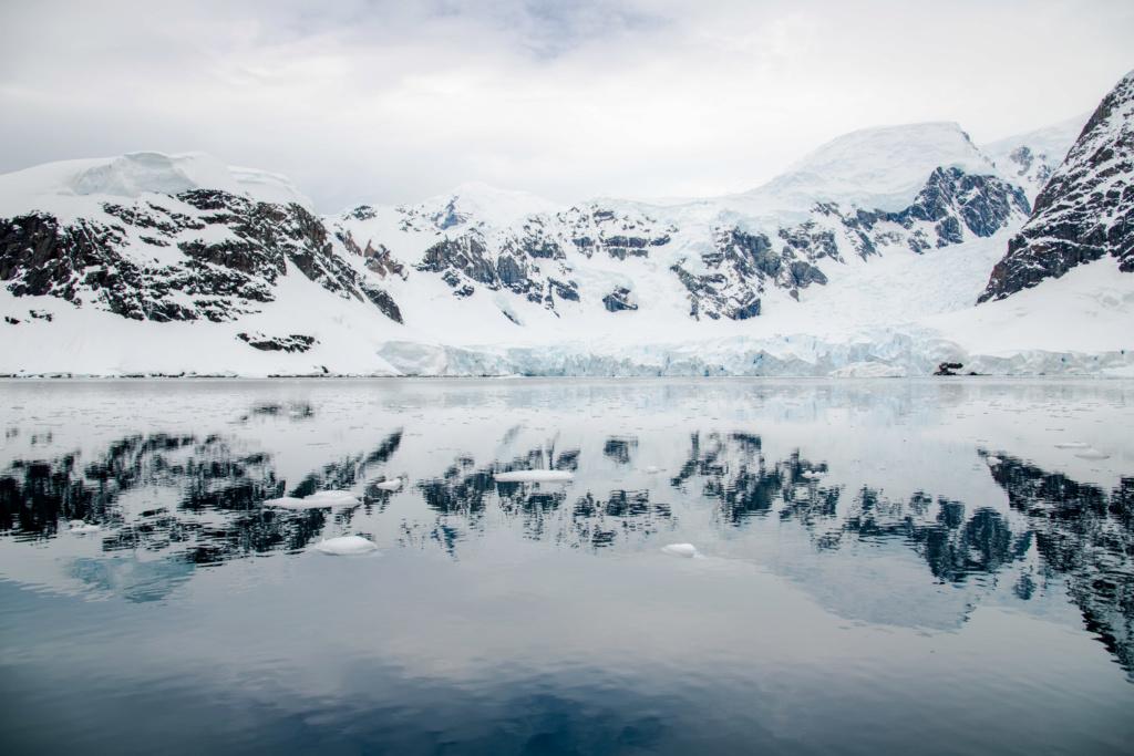 Antarctique - Page 4 N-200126