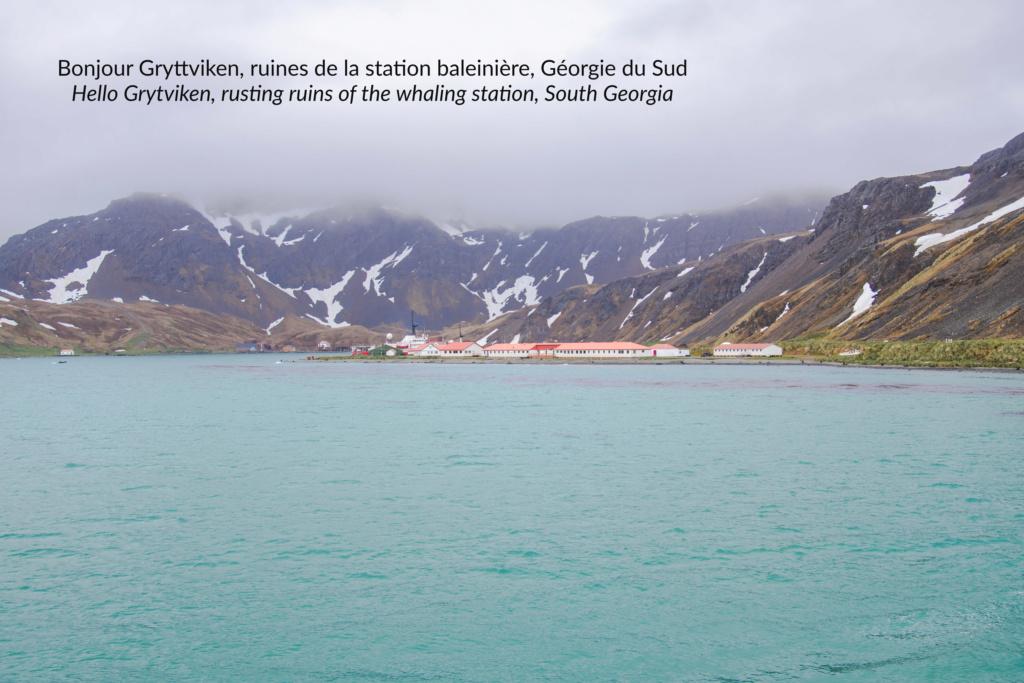 Antarctique - Page 2 N-200519