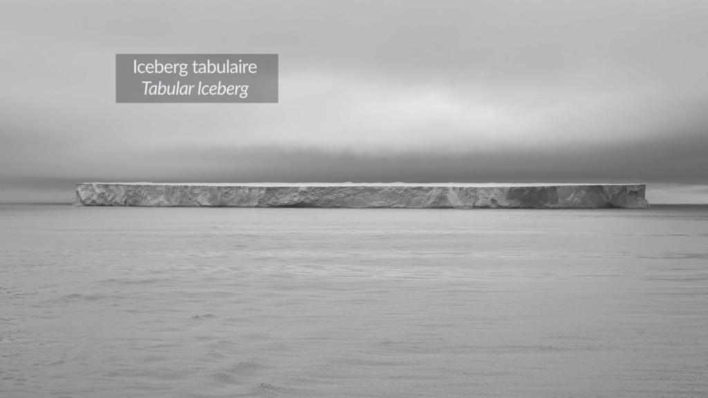 Antarctique - Page 3 N-200617