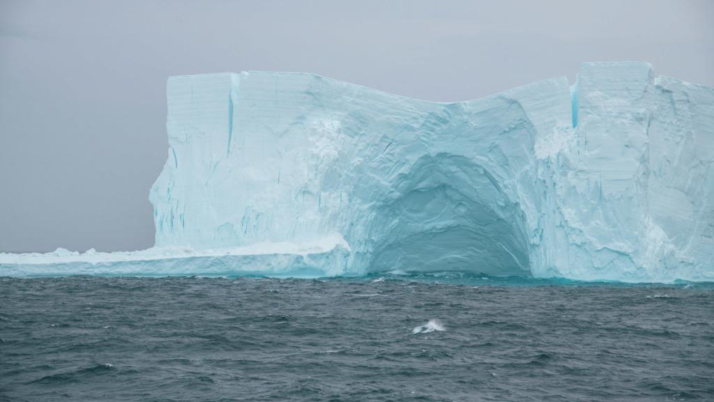 Antarctique - Page 3 N-200712