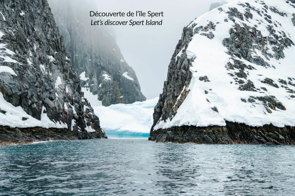 Antarctique - Page 3 N-200818