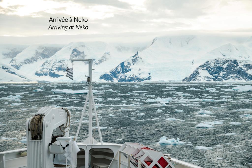 Antarctique - Page 4 N-200918