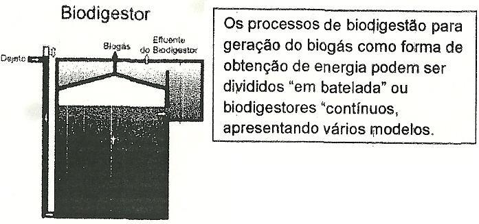 7 - Processos de Degradação Biológica Natural, Digestão Aeróbica. Por Meio de Fermentação e Respiração Biodig11