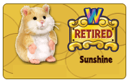 Retirement Sunshi10