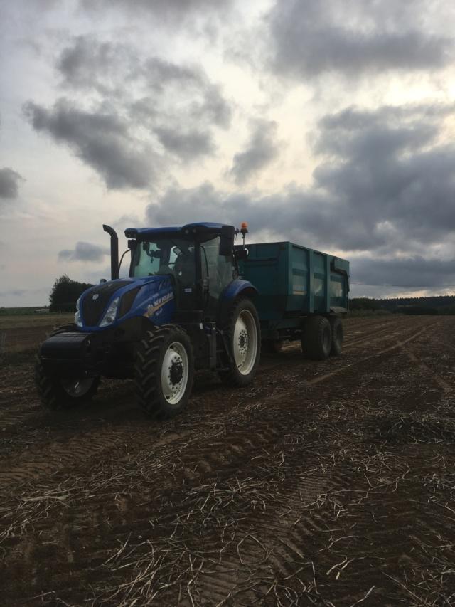 NewHolland T6 .Le tracteur le plus économe en carburant du marché  - Page 2 Chiens11