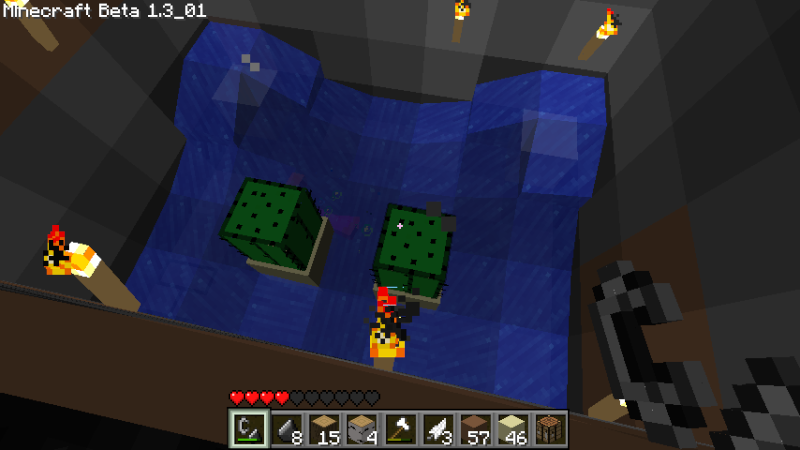 Incredibly simple mob trap tower 2011-014