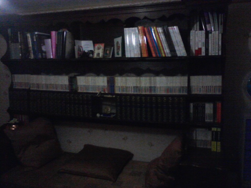 où cachez vous donc votre collection de livre ? - Page 5 P10-1110