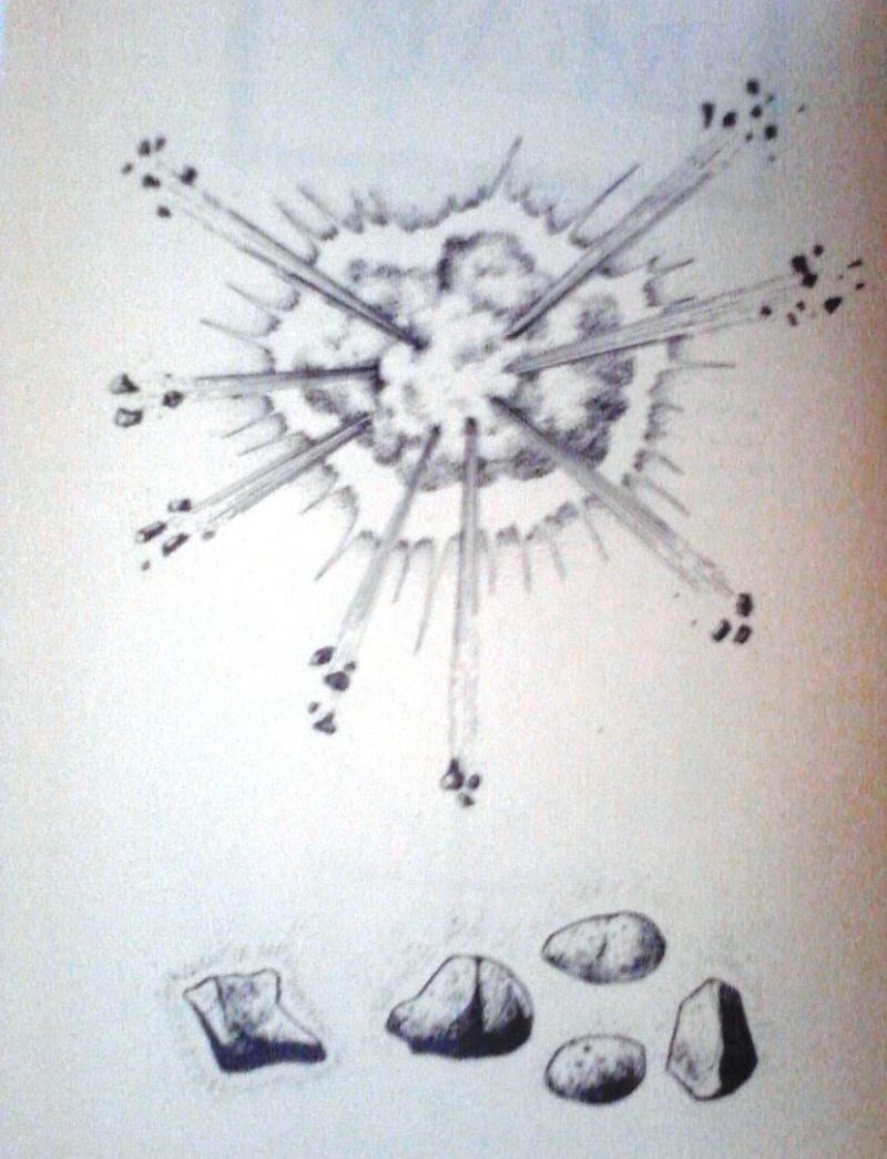 Illustrations P17-0810