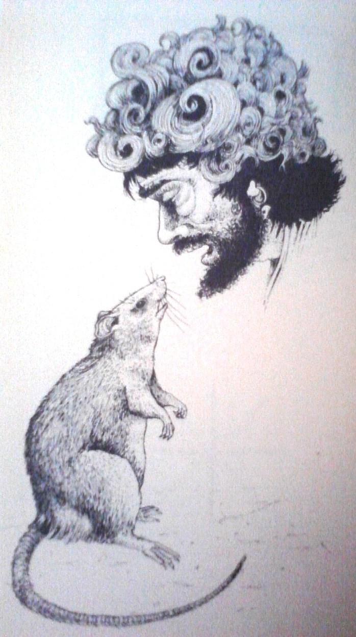 Illustrations P17-0826