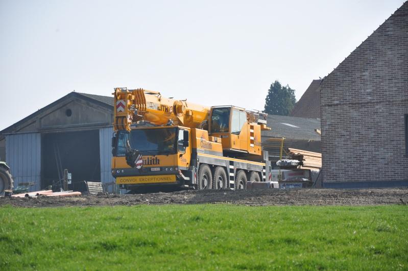 Les grues de DANILITH (Belgique) Dsc_0724