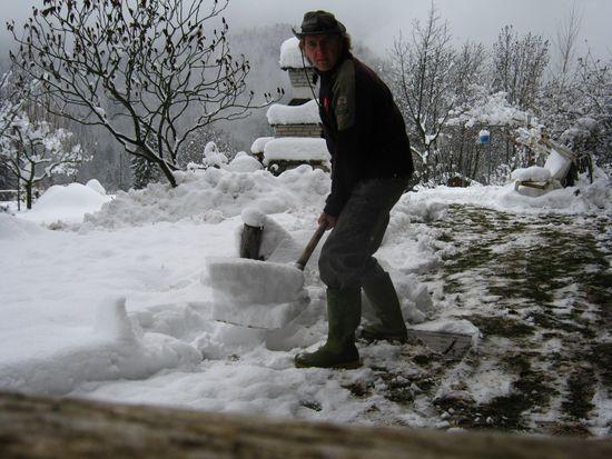 Bonsai sotto la neve Immagi16