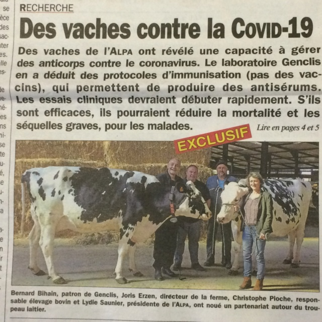 chauffe marcel , le covid revient !!!! - Page 2 Img_0710