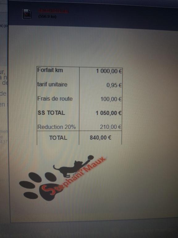 ENEE - mâle croisé Berger Allemand de taille grande, né environ août 2008 (PASCANI) - En FALD chez LiliDG (14) - Page 22 20190222