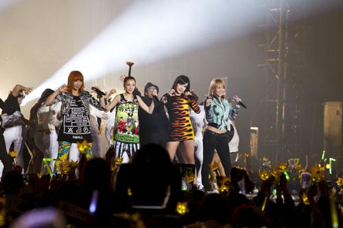 [PLURI] Concert de la YG Family 20101212