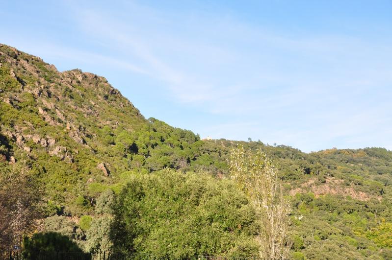 Al-Andalus (Andalousie - Algarve - Alentejo),  faune,  flore, paysages, maisons  et jardins fleuris - Page 2 01611