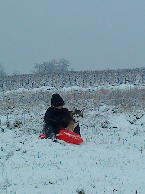 Deïko et Eÿden dans la neige  Dsc00210