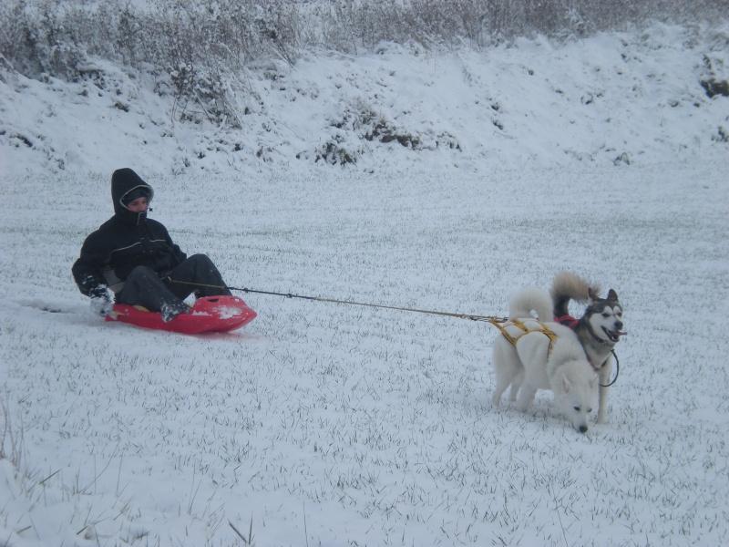 Deïko et Eÿden dans la neige  Photo_11