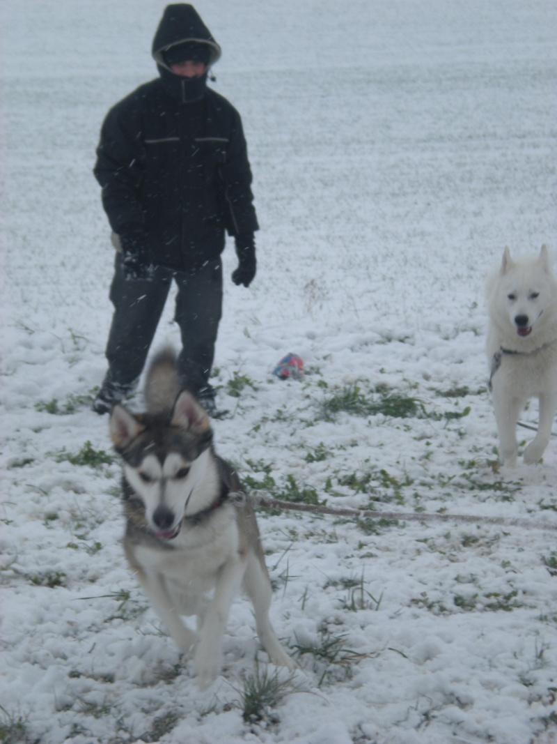 Deïko et Eÿden dans la neige  Photo_24