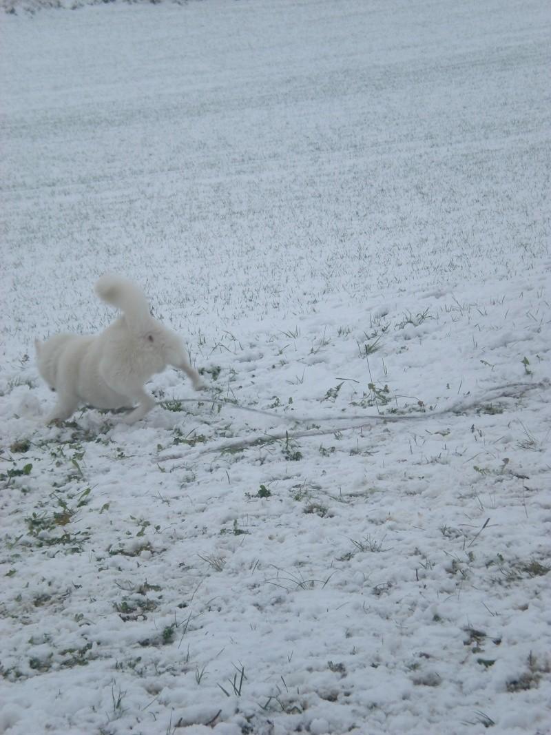 Deïko et Eÿden dans la neige  Photo_25