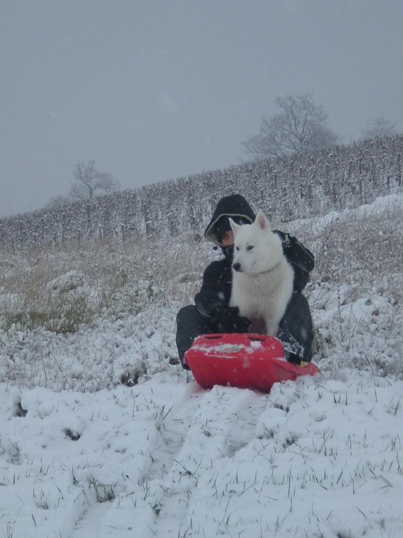 Deïko et Eÿden dans la neige  Photo_31