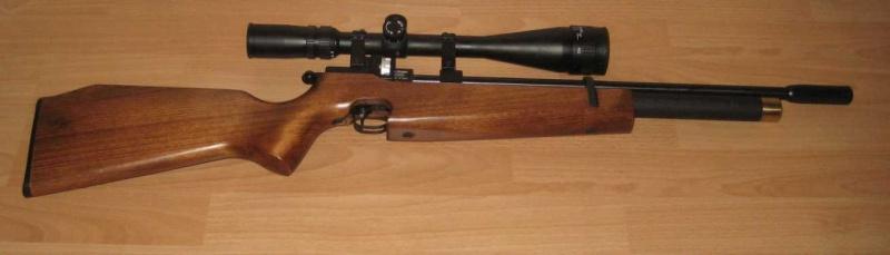 Ma Première PCP: CZ 200 Hunter 4,5mm Cz200h10