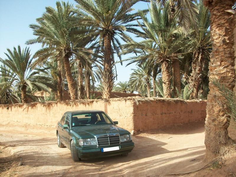 [Présentation] Ma Mercedes, vert malachite..  10036510