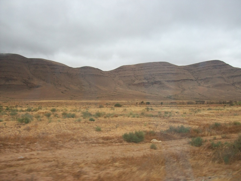En route vers le sahara, avec ma Mercedes!  100_3319