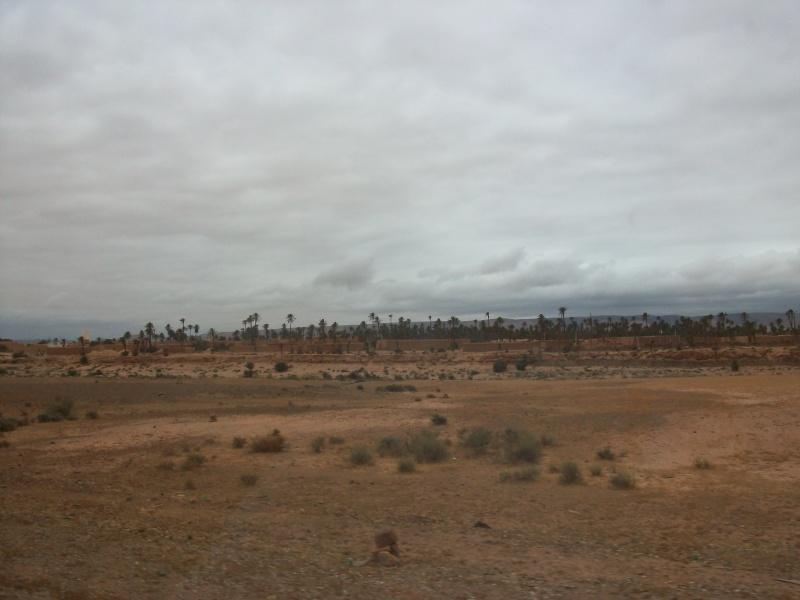 En route vers le sahara, avec ma Mercedes!  100_3328