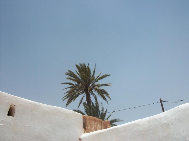 En route vers le sahara, avec ma Mercedes!  - Page 2 100_3626