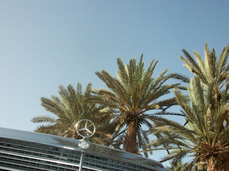 En route vers le sahara, avec ma Mercedes!  - Page 2 100_3633