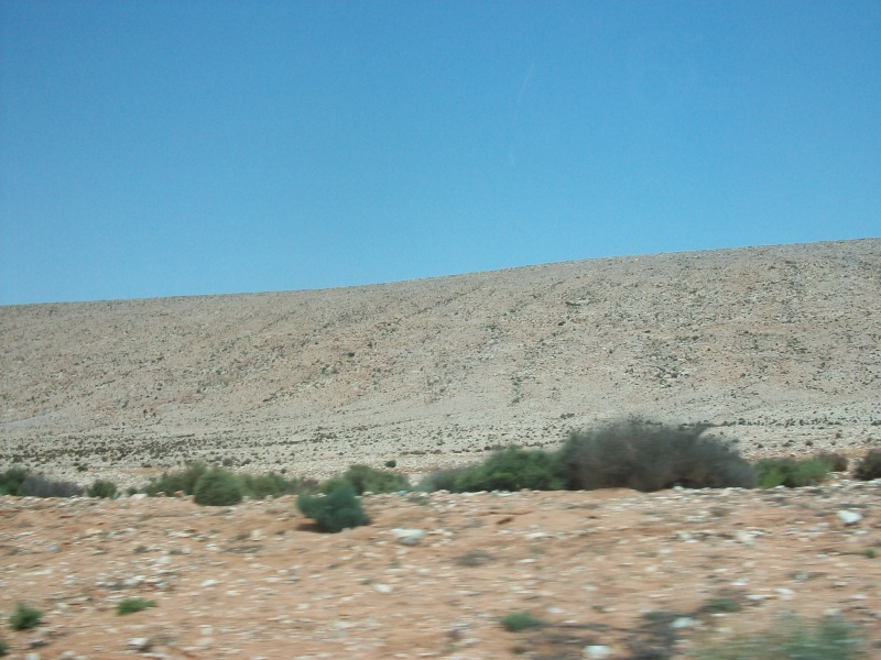 En route vers le sahara, avec ma Mercedes!  - Page 2 100_3642