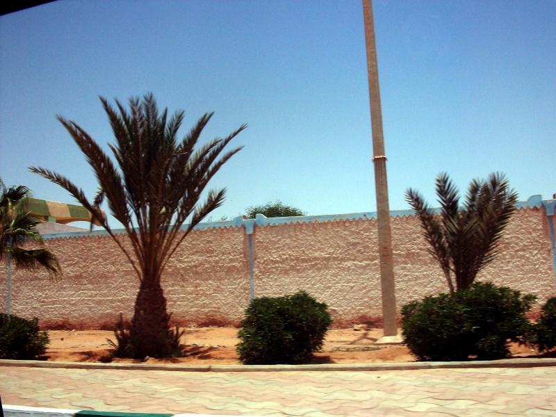 En route vers le sahara, avec ma Mercedes!  - Page 2 100_3646